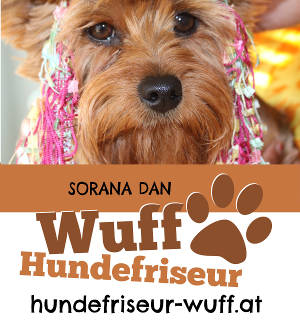 Hundesalon Wuff preview